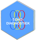 ECHO- DIAGNOSTIEK